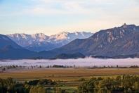 Morgennebel im Murnauer Moos
