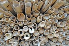 Bambusstapel