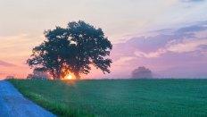 Sonnenaufgang in Meiling