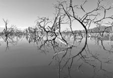 Lago Enriquillo Dom Rep