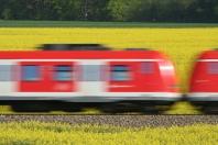 S-Bahn in voller Fahrt duch ein Rapsfeld