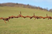 grenzenlose Freiheit oder