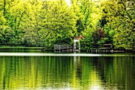 Weßlingersee (7)